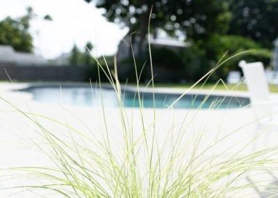 green-seagrass